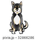 黒柴 戌 犬のイラスト 32866286