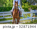 馬術競技の風景 32871944