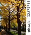 黄葉と化した銀杏並木の歩道 32873735