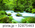 奥入瀬渓流 渓流 川の写真 32875463