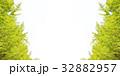 緑のバナー素材 32882957