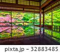 瑠璃光院 錦秋 紅葉の写真 32883485