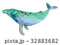 海 ブルー 青のイラスト 32883682