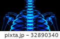 3D illustration of shiny blue skeleton system. 32890340