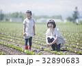 畑作業をする親子 32890683