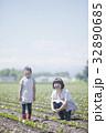 畑作業をする親子 32890685