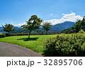 宮ヶ瀬 鳥居原 湖畔庭園 32895706