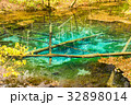 北海道 神の子池 秋の写真 32898014