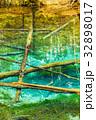 北海道 神の子池 秋の写真 32898017