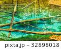 北海道 神の子池 秋の写真 32898018