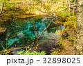 北海道 神の子池 秋の写真 32898025