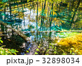 北海道 神の子池 秋の写真 32898034