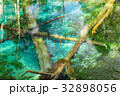 北海道 神の子池 秋の写真 32898056