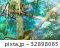 北海道 神の子池 秋の写真 32898065