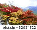 秋深まる。山頂のドウダンツツジ 32924522