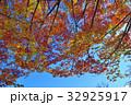 紅葉 秋 葉の写真 32925917