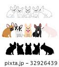 犬 小型犬 フレンチブルドッグのイラスト 32926439