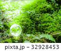 エコ エコロジー 新緑の写真 32928453