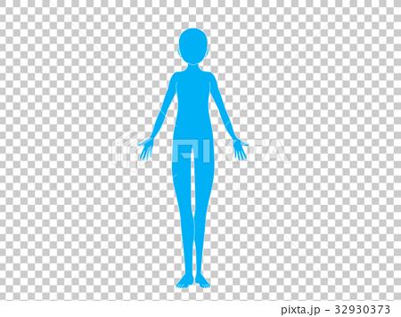 人体(青色) 32930373