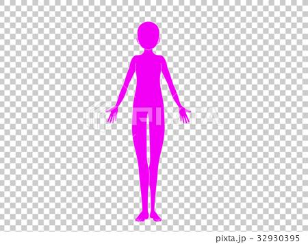 人体(ピンク色) 32930395