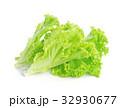 サラダ サラダ グリーンの写真 32930677
