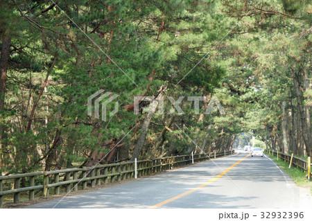 佐賀県道347号虹の松原線 32932396