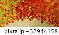 紅葉 秋 葉のイラスト 32944158