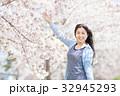 サクラの木と若い女性 32945293