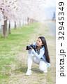 満開の桜と女性カメラマン 32945349