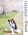 満開の桜と女性カメラマン 32945351