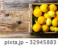 農業 りんご アップルの写真 32945883