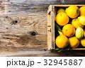 農業 りんご アップルの写真 32945887