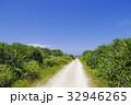 沖縄 青空 自然の写真 32946265