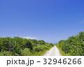 沖縄 青空 自然の写真 32946266