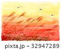 夕焼け空とすすきと赤とんぼ 32947289