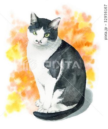 白黒猫 32956167