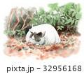猫 白黒 手描きのイラスト 32956168