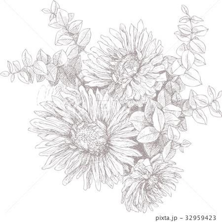 Vintage botanical illustration blossom gardenのイラスト素材 [32959423] - PIXTA