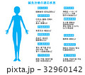 鍼 説明図 鍼治療のイラスト 32960142