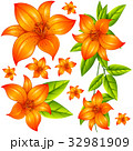 フラワー 花 植物のイラスト 32981909