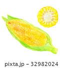 野菜 とうもろこし コーンのイラスト 32982024