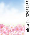 コスモスと空 32983168