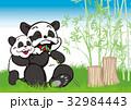 パンダ 親子 竹のイラスト 32984443