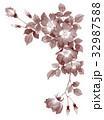 一重咲きバラの上部フレーム素材セピア 32987588