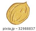 くるみ 水彩画 胡桃のイラスト 32988837