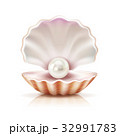 Shell Pearl Realistic Isolated Image 32991783