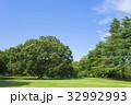 公園 森 林の写真 32992993
