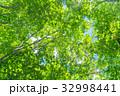 新緑エコイメージ 32998441