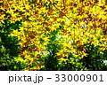 もみじの葉っぱ 33000901