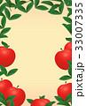 りんご 33007335